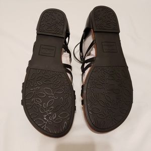 Rocket Dog Shoes - NWT Black Rocket Dog Hammel Gladiator Sandals